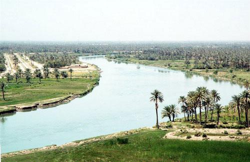 тигр река фото