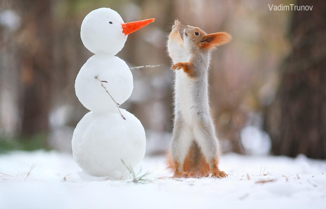 первом картинки красивые прикольные конец зимы улица, одна самых