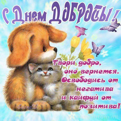 День доброты с открытками 16