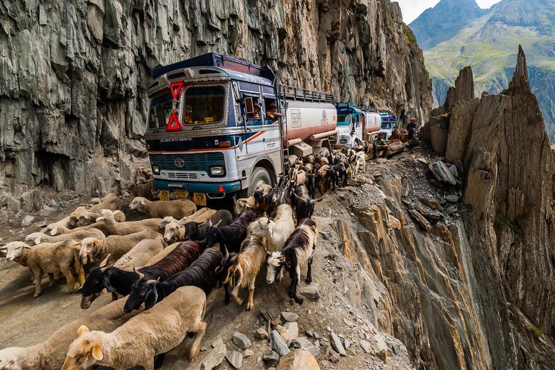 Зоджи Ла Пасс, Индия