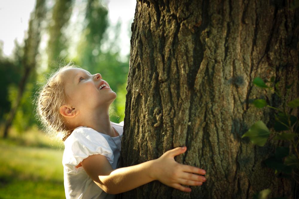 На Земле лесов нет