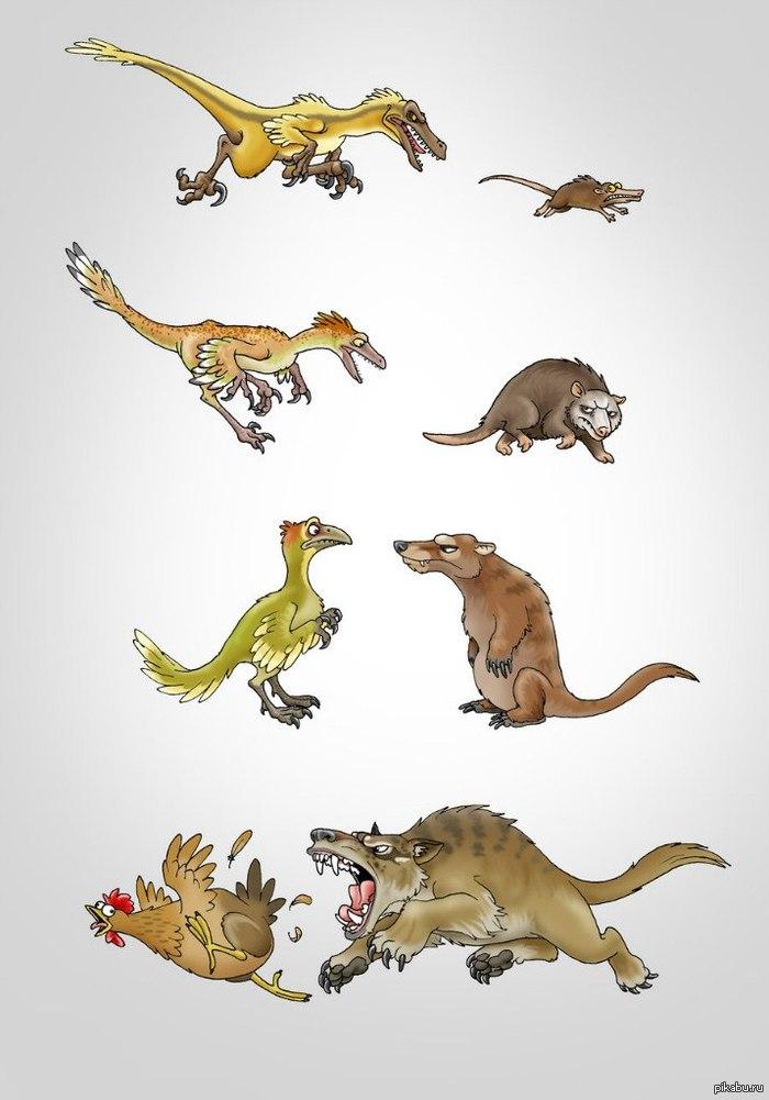Смешная картинка эволюция, картона цветной бумаги