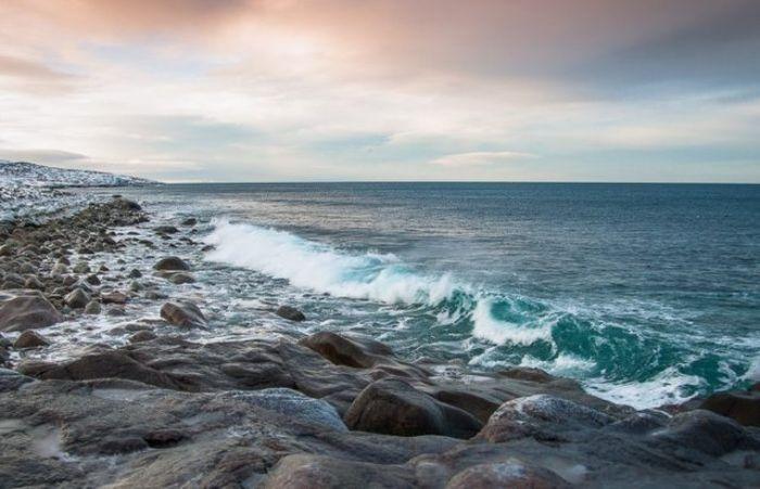 Россия закрыла Баренцево море, или Вторая тюленья