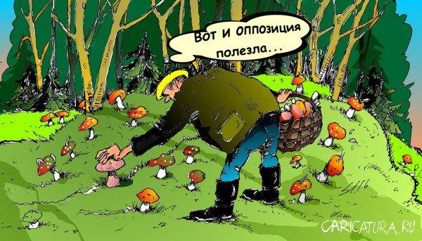 Картинки, смешные картинки по грибы