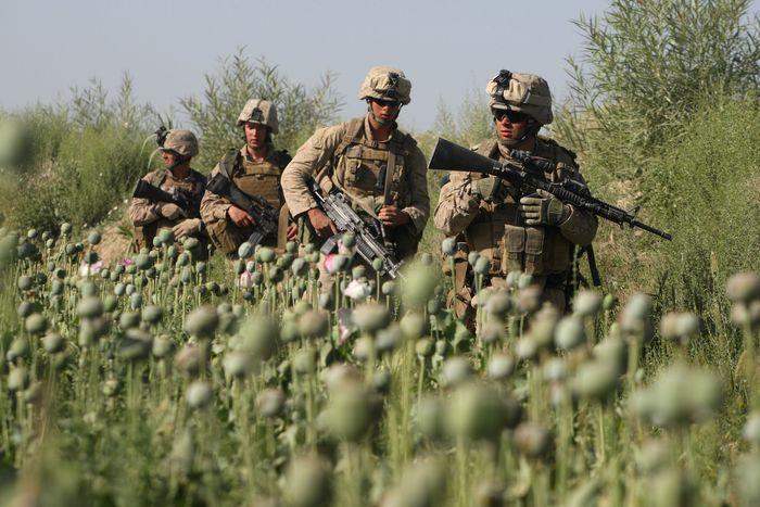 """Успехи"" США в Афганистане"