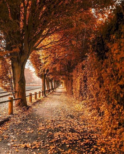 Просто красивые фото Fascinating_photos_03