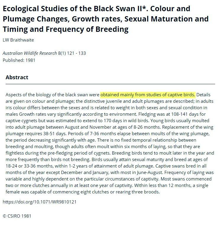 Спаривание в неволе сексуальная ложь и