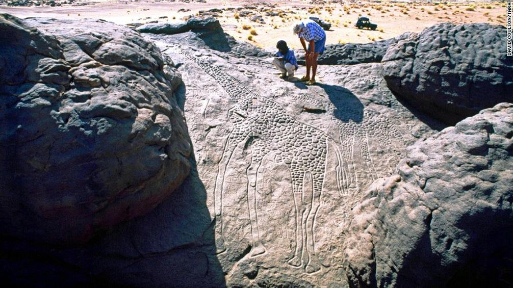 the worlds largest rock art petroglyph dabous giraffe - 1006×565