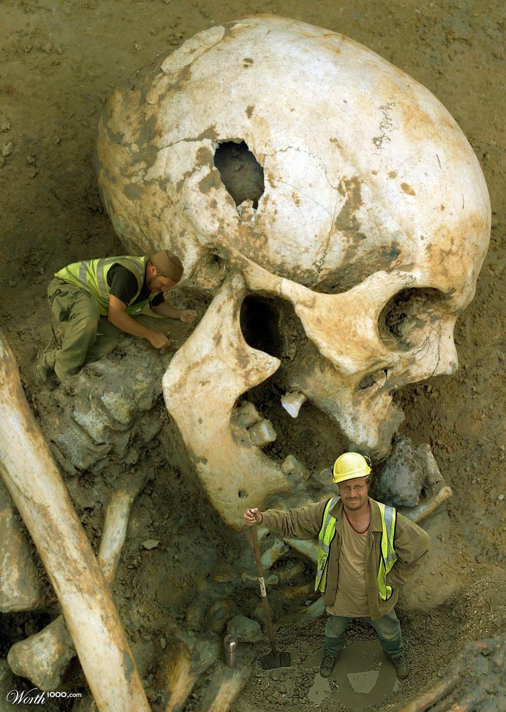 долга останки скелета 12 метров день предлагается