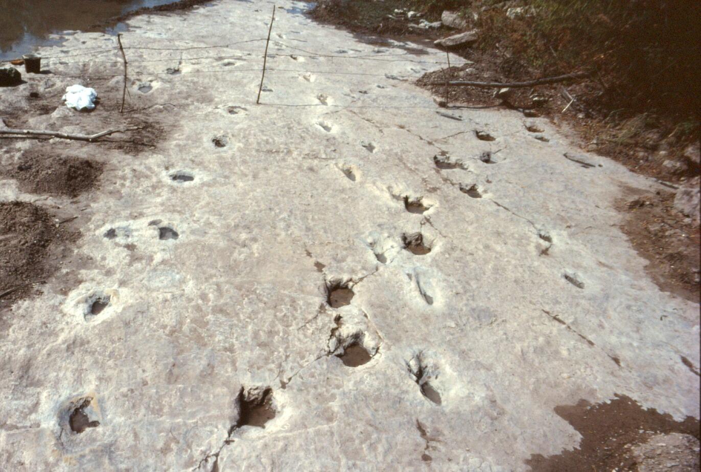 следы у реки Пэлюкси