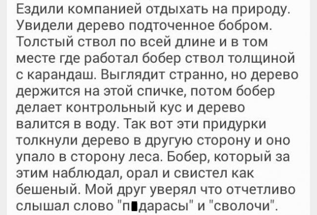 http://cont.ws/uploads/pic/2017/6/фот33.jpg
