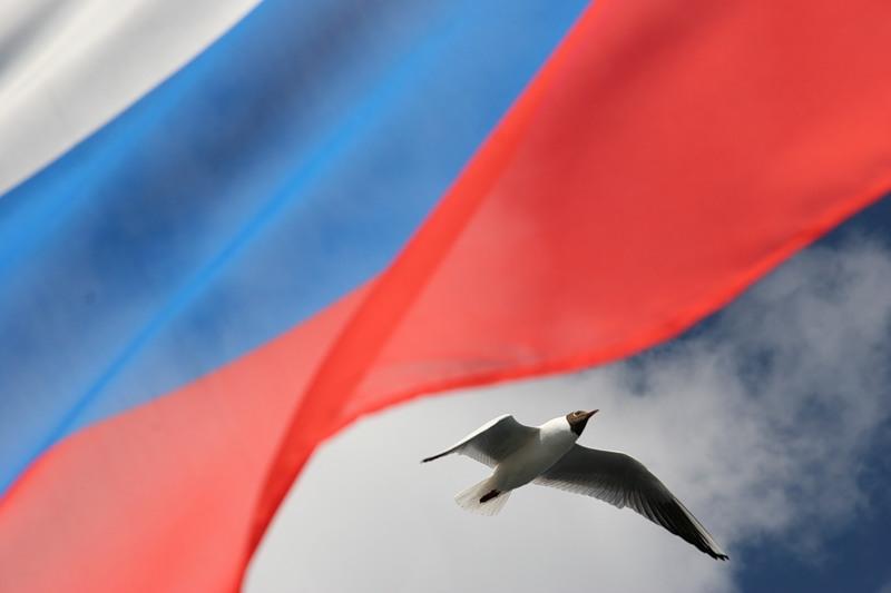 День России 2017: программа для Санкт-Петербурга