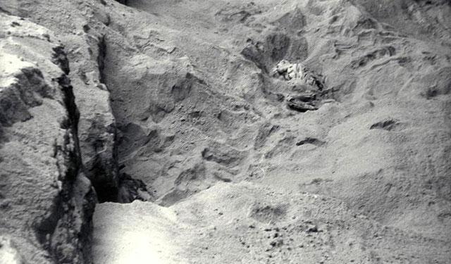 Подземный Третий рейх: что cпрятали нацисты глубоко под землей