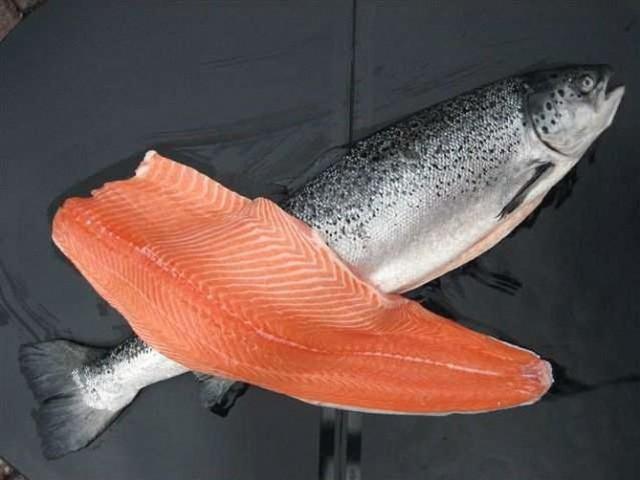 Норвежский лосось — самая токсичная еда во всём мире.