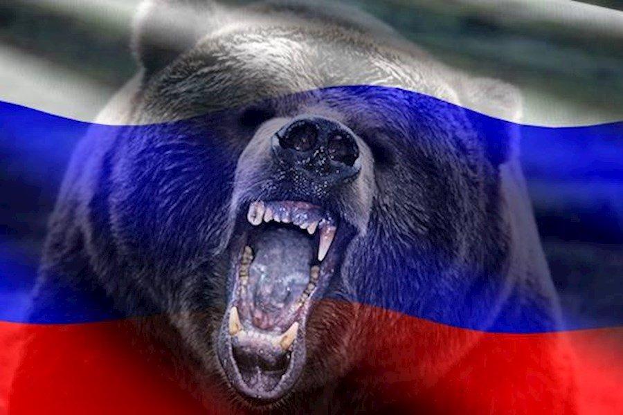 Порошенко и его банда раздразнили русского медведя