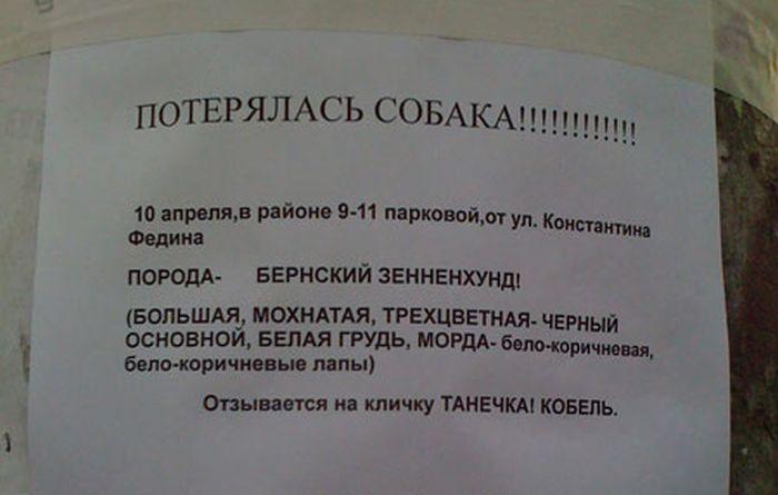 https://cont.ws/uploads/pic/2018/11/nz1.ru_yumor-iz-obyavleniy-i-vyvesok-na-ulicah-nashih-gorodov-33-foto_10.jpg