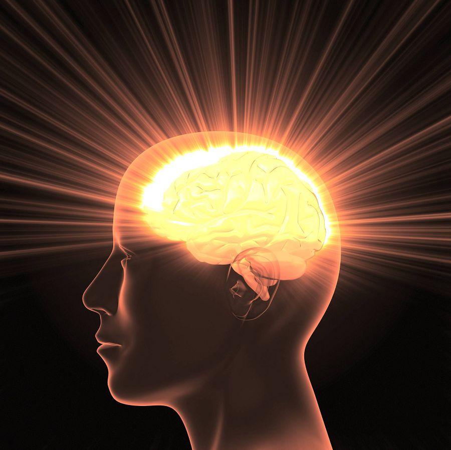 картинка светящийся мозг фотоателье