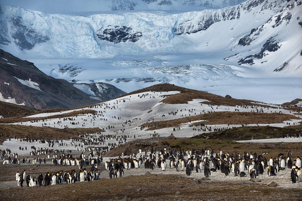 Необычное явление было зафиксировано спутниковой съёмкой Google Earth на склоне самой высокой вершины цепи Эллардайс,