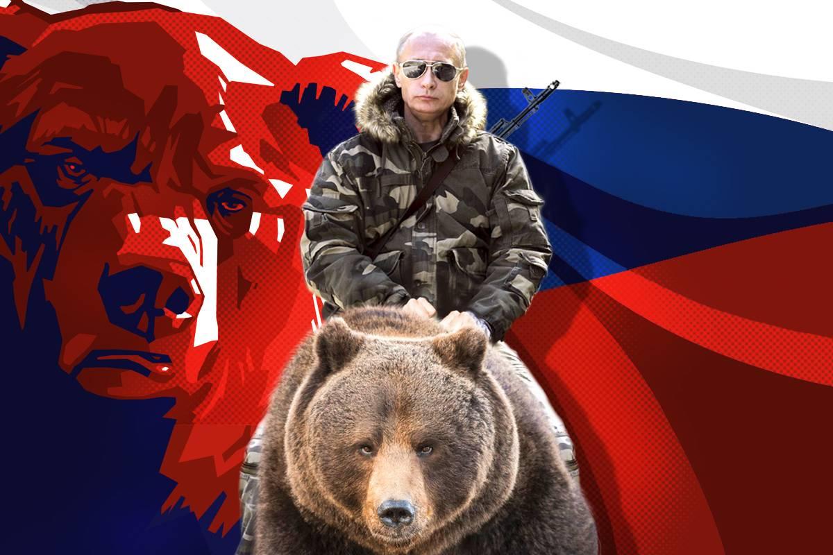 картинки русский медведь на фоне флага россии зрители хвалят многосерийный