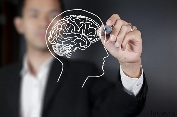 Упражнения, которые помогут улучшить память