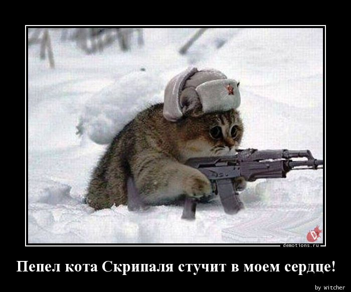 https://cont.ws/uploads/pic/2018/7/1523215004_Pepel-kota-Skripalya_demotions.ru.jpg