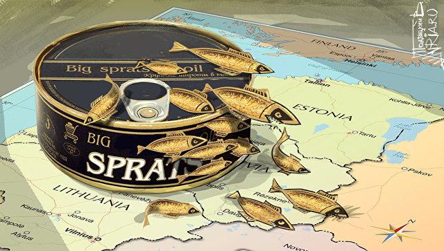 План по разделу России, или Влажные мечты