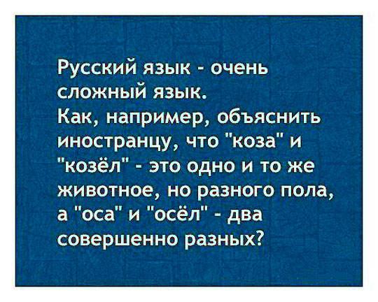 https://cont.ws/uploads/pic/2018/8/russ-yaz.jpg