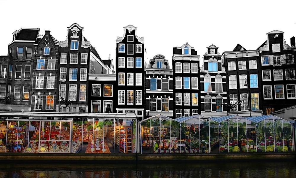 Нидерланды назвали позор своей страны
