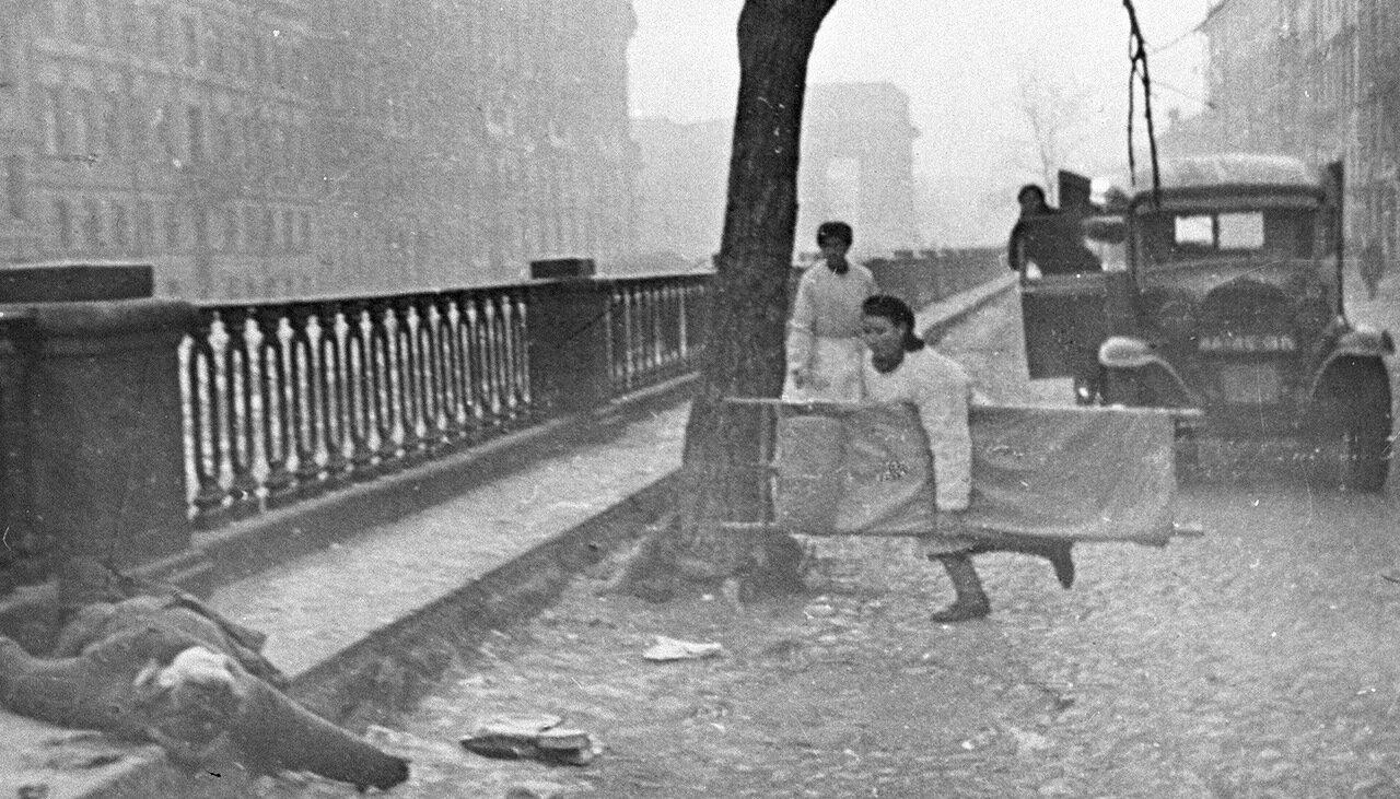 Так кто же умирал в блокадном Ленинграде?
