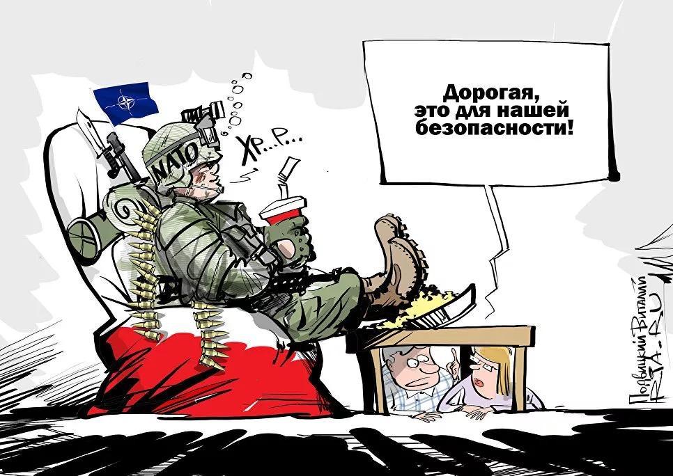 Смешные картинки про поляков