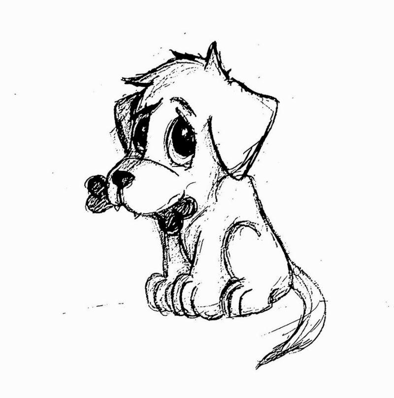 Рисунок собаки смешной карандашом, летию свадьбе