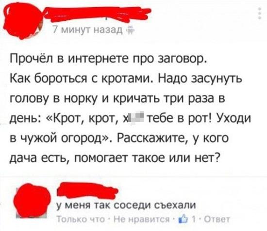 prikoly_iz_seti_23.jpg