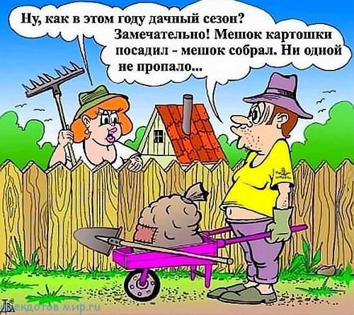 Анекдот про картошку копать