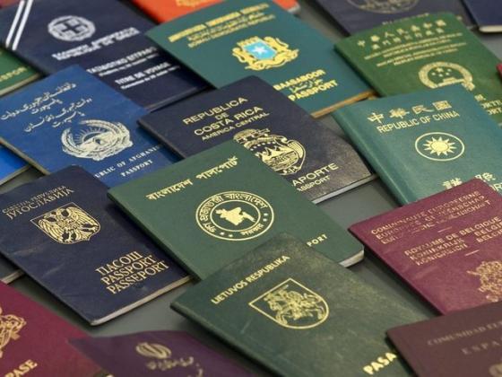 Подданство отличается от гражданства тем что