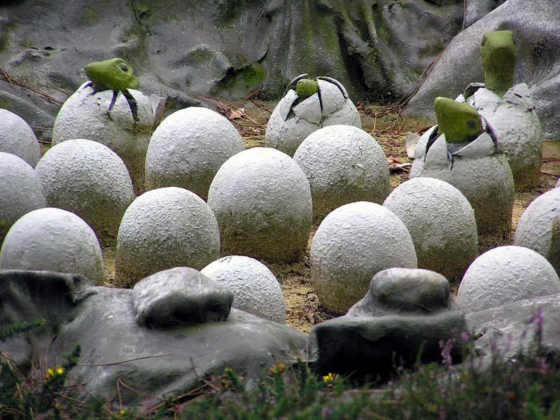 Яйца Пинчука