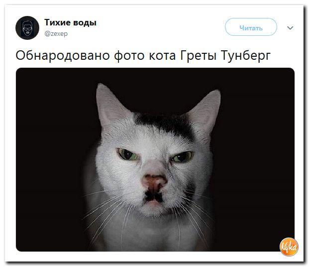 Į viešumą pateko norvegės autistės Gretos Tunberg katino foto....