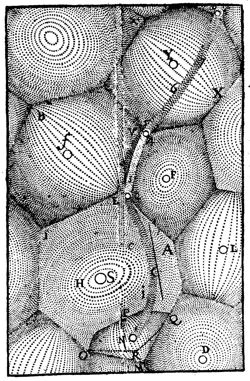 """Рисунок из книги Декарта """"Принципы"""" (Амстердам: Льюис Elzevirium, 1644)."""