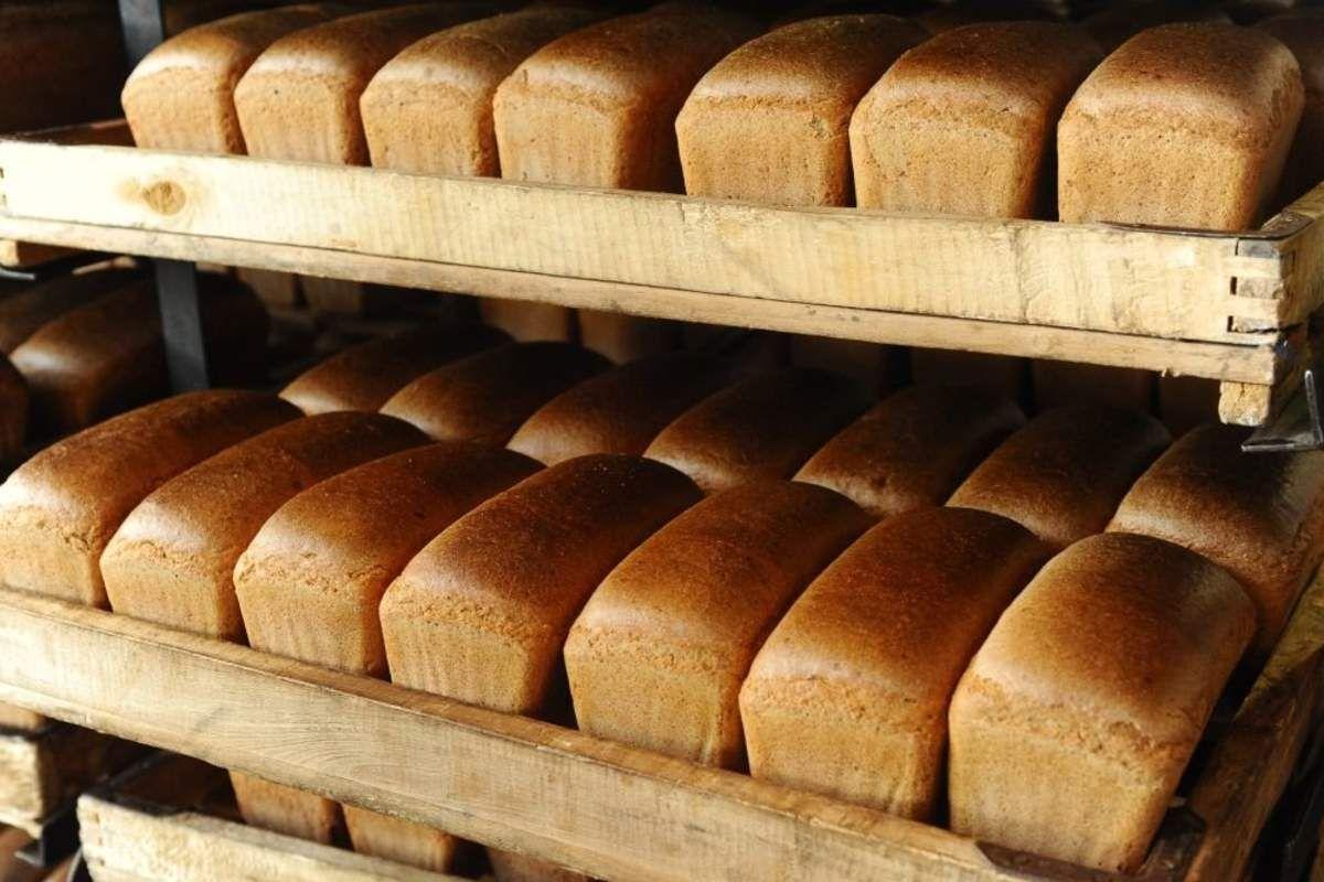 Курский хлеб оказался одним из лучших в России