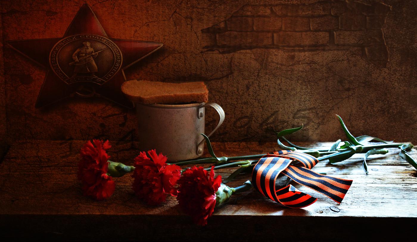 Картинка гвоздики с георгиевской лентой помним гордимся