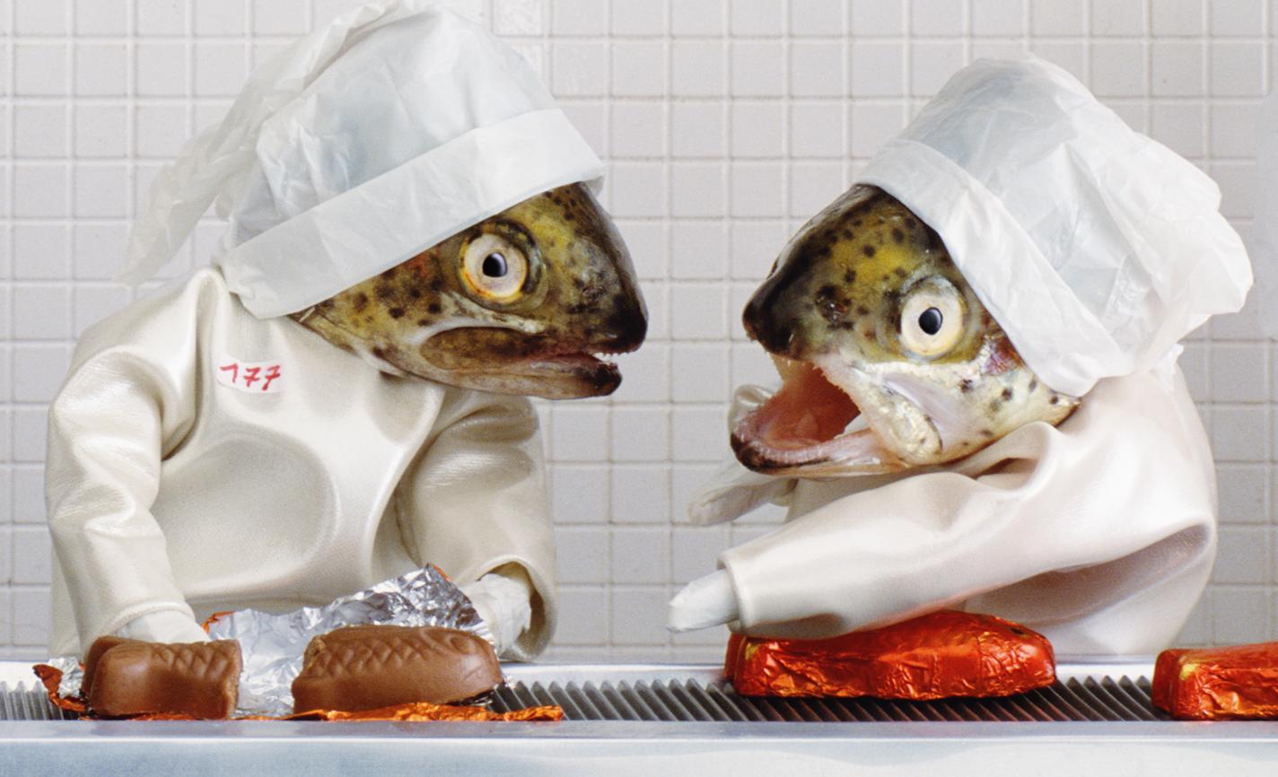 Веселые картинки про рыбу