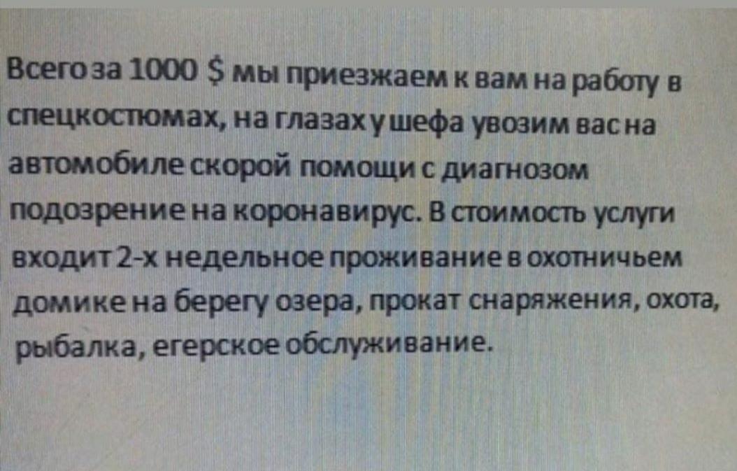 1584634385186367025.jpg