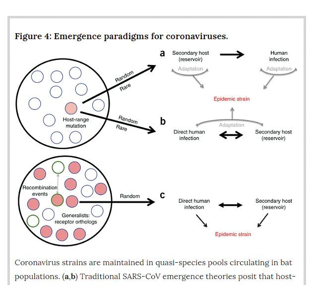 Koronavirus vytvořili za granty od americké vlády, pokec24