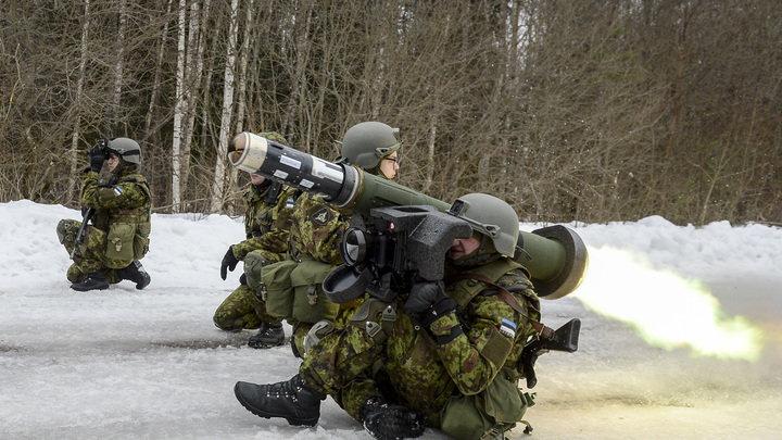 """""""Утка крякнула: """"Служу России!"""": Всего одна птица смогла сорвать учения НАТО в Польше"""