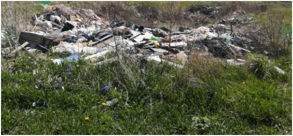 Экологическая катастрофа: мусор с МПБО-2 нашли в Ленобласти