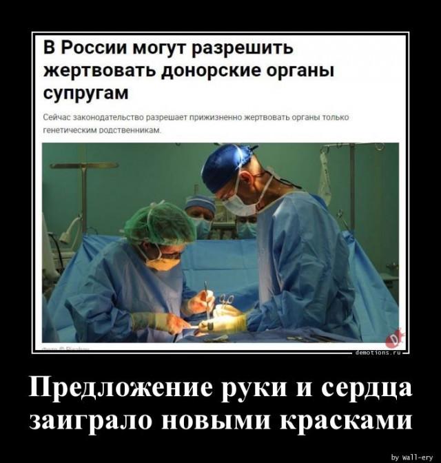 1590994713_demy-14.jpg