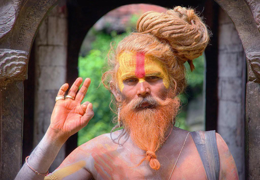 Индийский брахман.