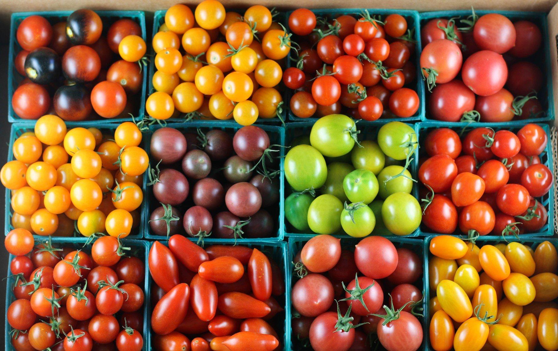 которых внутренняя помидоры сорт интересной формы название и фото что светящаяся