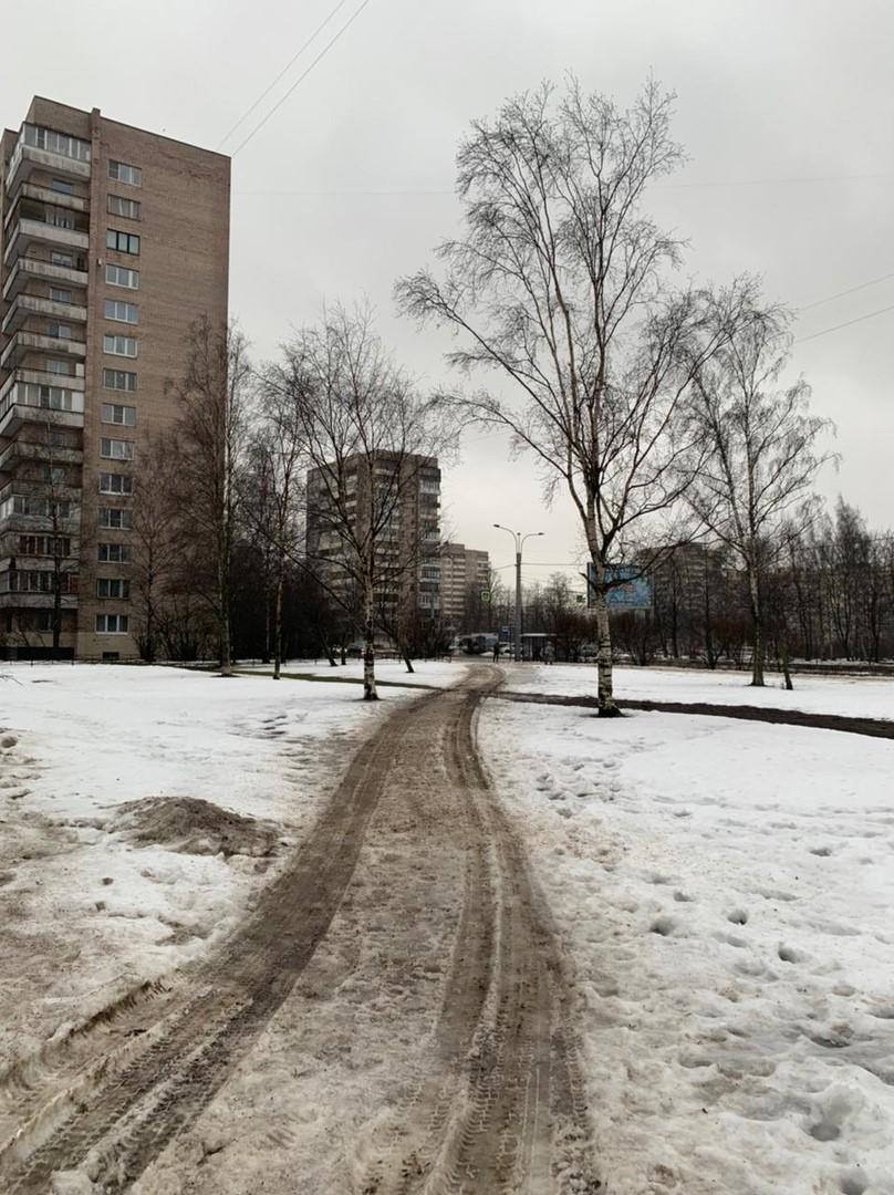 Фрунзенский район опять на дне рейтинга по качеству уборки улиц