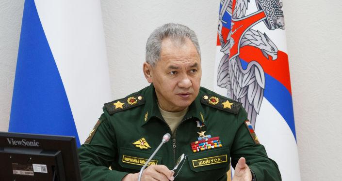 Шойгу: К обвинениям в сторону России по любому поводу не присоединился только ленивый