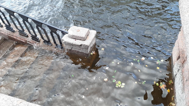 Уровень воды в Неве опустился до 120 сантиметров 8